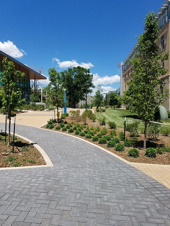 higher education - csm spruce hall-1